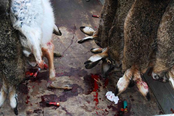 103- Jäger mit Beute, Bret, Wild Jagd, Fasane, Hasen, Rehe