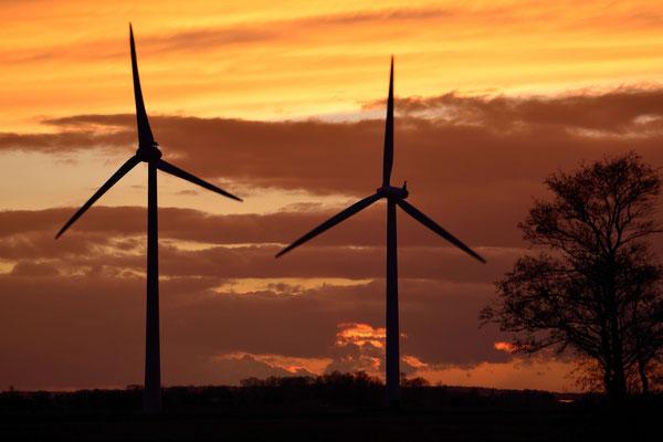 70 - Windpark Oederquart, Windrad, Windräder, Windkraftanlagen, Niedersachsen, Germany, Deutschland