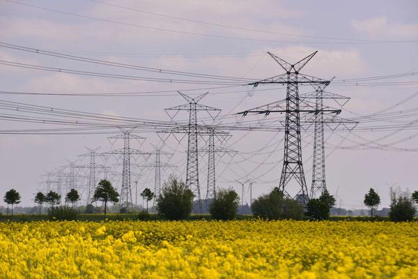 23- Windrad, Windkraftanlage, Windkraft, Windgenerator, Ökostrom, Itzehoe, Schleswig Holstein, Raps, Strommasten