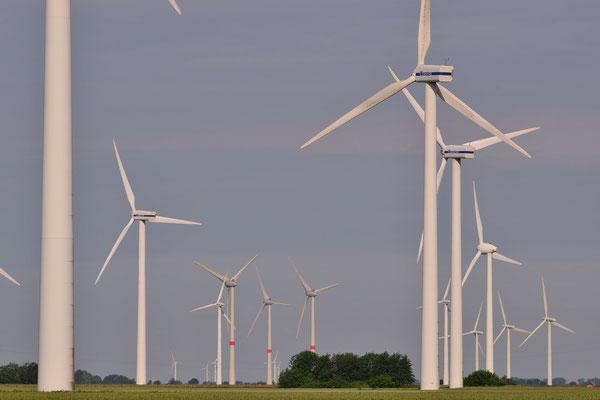 2- Windrad, Windkraftanlage, Windpark, Windkraft, Windgenerator, Windpark Oederquart, Ökostrom