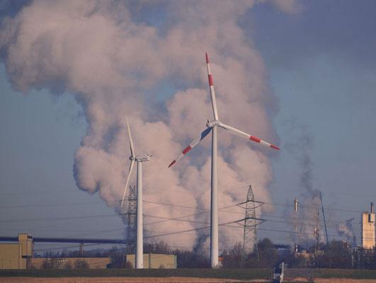 117 - Windräder vor einer Dampfwolke, Elbe bei Brunsbüttel.