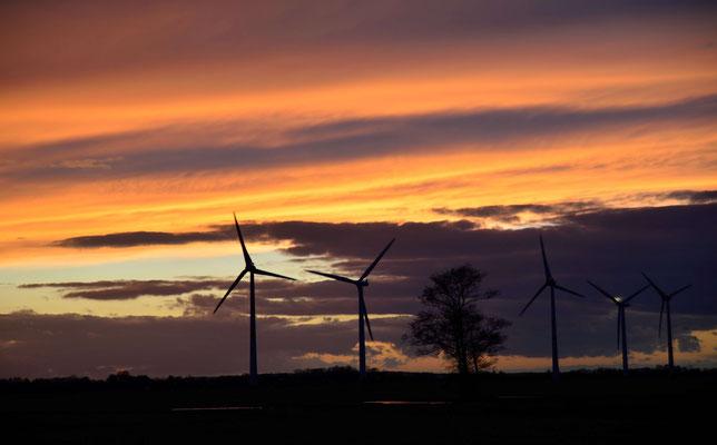 69 - Windpark Oederquart, Windrad, Windräder, Windkraftanlagen, Niedersachsen, Germany, Deutschland