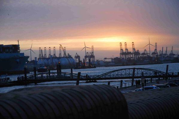71 - Abendstimmung im Hamburger Hafen mit Kranreihen im Hintergrund.
