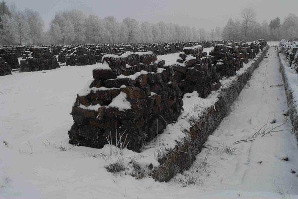 95- Torfabbau, Torf, gestochen Stapel, Trocknen, Winter