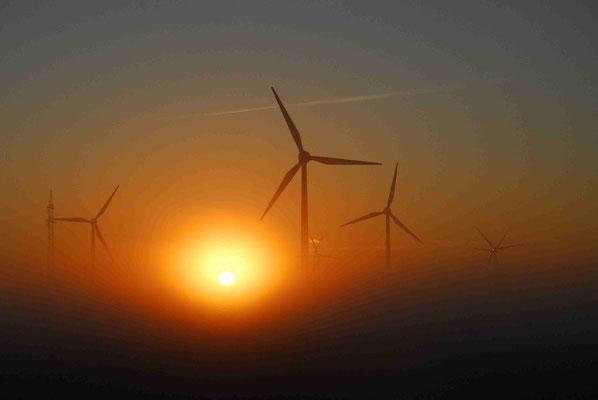 34 - Windrad, Windkraftanlage, Windkraft, Windgenerator, Ökostrom,  Windpark Oederquart, Dämmerung,  Sonnenaufgang, Sonnenuntergang, Nebel
