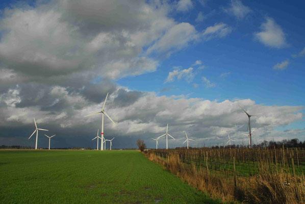 110 - Windpark Oederquart, Windrad, Windräder, Windkraftanlagen, Niedersachsen, Germany, Deutschland