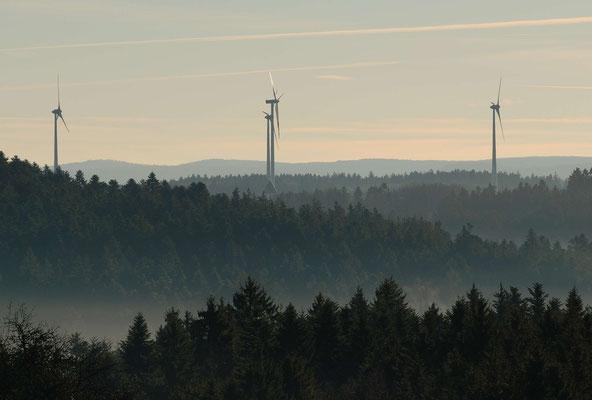39- Wald im Nebel, Windräder