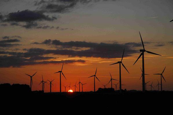 31 - Windrad, Windkraftanlage, Windkraft, Windgenerator, Ökostrom,  Windpark Oederquart, Dämmerung,  Sonnenaufgang, Sonnenuntergang