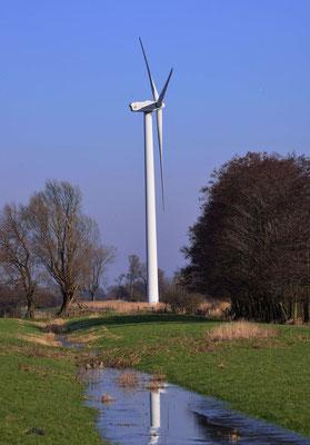115 - Windrad in der Elbmarsch bei Wischhafen in Niedersachsen.