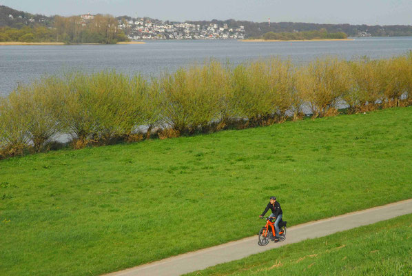 30- Elbdeich, Elbe, Fahrradfahrer