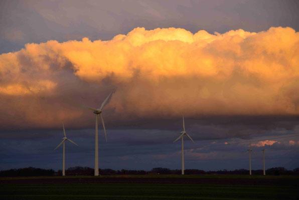 5- Windräder im Windpark Oederquart in Niedersachsen.