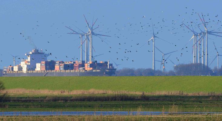 81 -  Windrad, Windkraftanlage, Windkraft, Windgenerator, Ökostrom,  Windpark Oederquart, AKW, Atomkraftwerk, Kernkraftwerk,