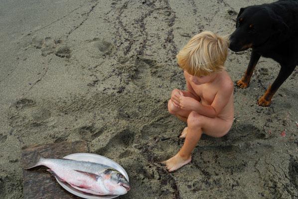 118- Nahrungskette, Fisch, Junge, Hund