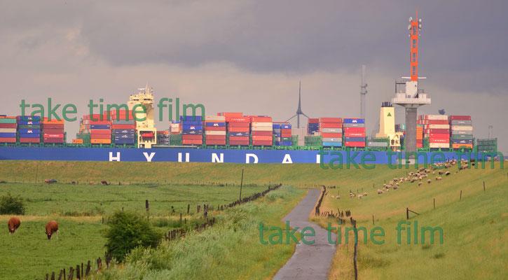 Riesige Containerschiffe scheinen durch die Wiesen zu fahren.