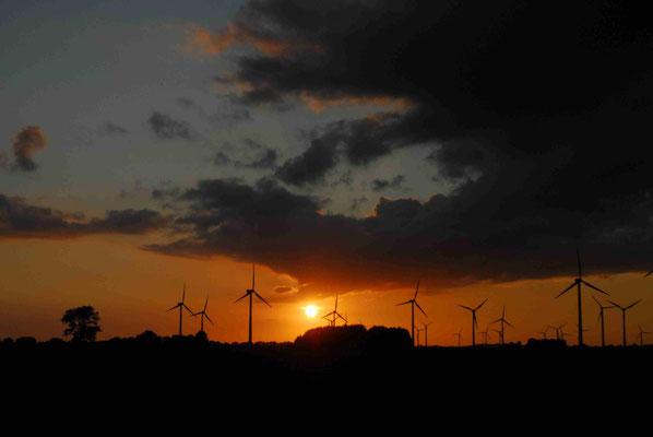 30- Windrad, Windkraftanlage, Windkraft, Windgenerator, Ökostrom,  Windpark Oederquart, Dämmerung, Sonnenaufgang, Sonnenuntergang