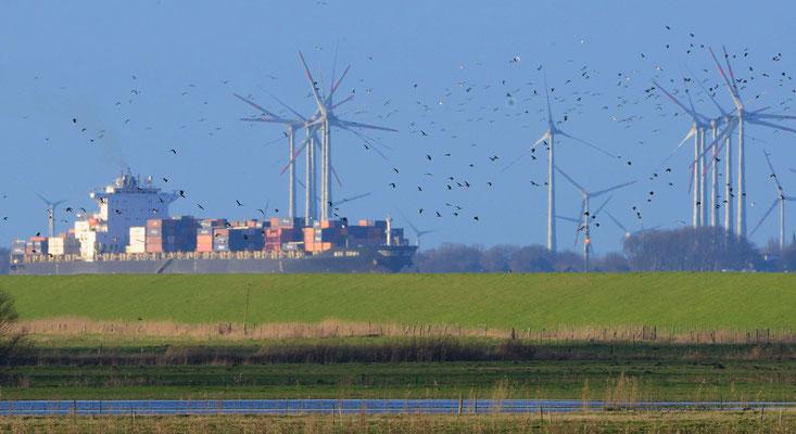 18- Windrad, Windkraftanlage, Windkraft, Windgenerator, Ökostrom, Schiff, Containerschiff, Elbe, Schleswig Holstein, Niedersachsen