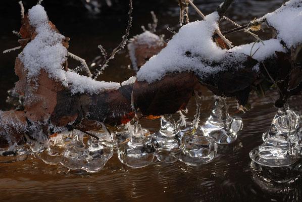 15- Eisglöckchen Bach, Kristalle, Winter, Eis