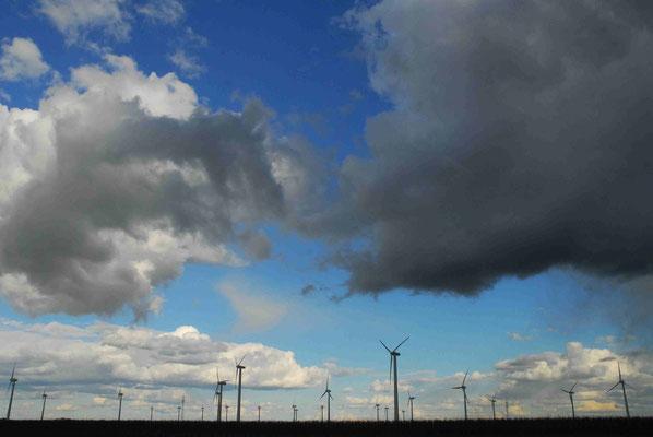65 - Windpark Oederquart, Windrad, Windräder, Windkraftanlagen, Niedersachsen, Germany, Deutschland