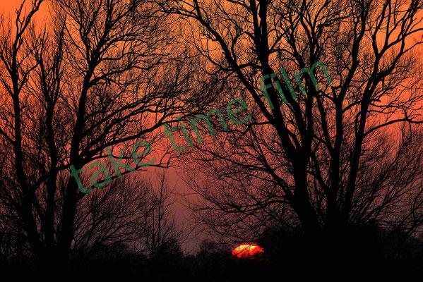 23 - Sonnenuntergang über dem Moor