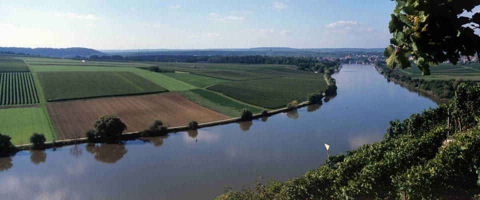 5- Neckar mit Feldern
