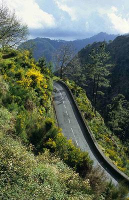 4- Straße Madeira Nonnental