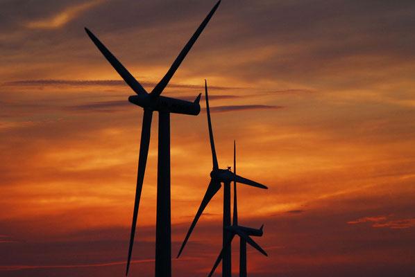 153 - Windradreihe vor stimmungsvollem Himmel bei Sonnenuntergang.