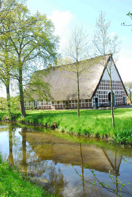 63- altes Bauernhaus, Norddeutschland