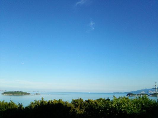 真っ青な海と、その青を映した海です。