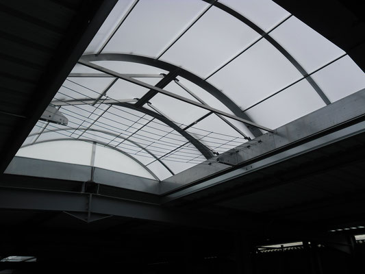 ouverture de toit à fougères
