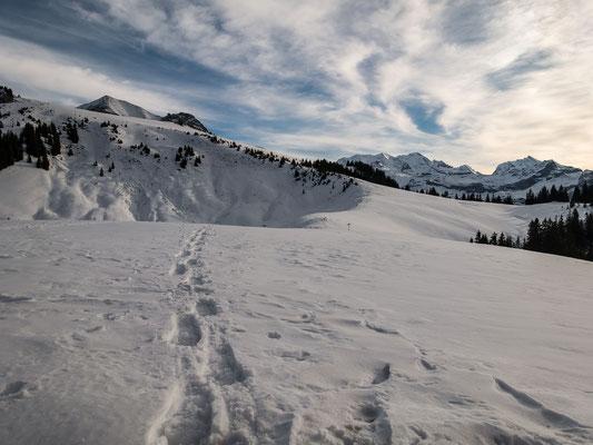 Ab 1500 Meter überwiegt die weisse Unterlage, wenn auch nicht in üppigen Mengen. Blick vom Schatthus zum Dreispitz, Blüemlisalp und Doldenhorn
