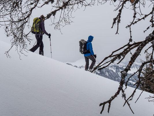 Keine üble Schneequalität bot der Abstieg Richtung Waldweid