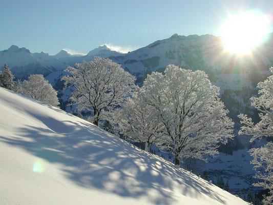Ein prachtvoller Wintertag im Frutigland