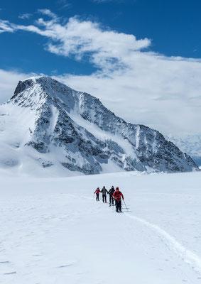 Von den vielen Spalten im Studergletscher ist nichts zu sehen, im Hintergrund das Wasenhorn, wohl einer der wenig besuchten Gipfel in dieser Gegend