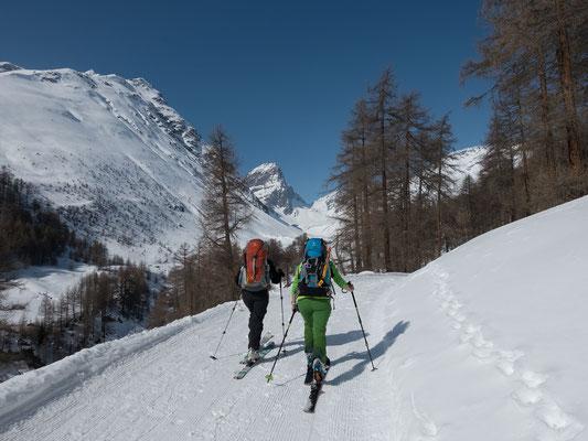 Gemütlich laufen wir ins Val Tuoi hinein. Der Piz Buin trumpft in weiter Ferne auf, hier und jetzt machen sich erstmals diesen Winter die schweren Rucksäcke mit der Hochgebirgsausrüstung bemerkbar
