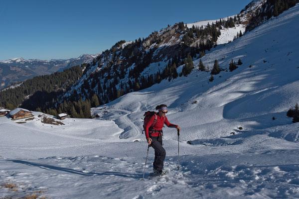 Trotz unserer geringen Ausgangshöhe auf gut 1100 Metern mussten wir die Schneeschuhe nicht lange tragen