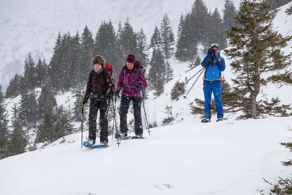 Ab und zu begleitet uns leichter Schneefall auf dem Weg durch den lichten Nadelwald