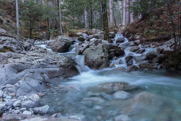 Der Rivisecce sprudelt nach den Hochwassern zwischen Bäumen und Felsbrocken hindurch
