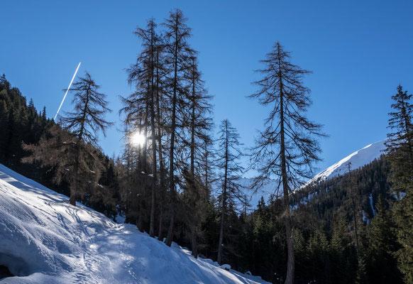 Aufstieg von Monstein Richtung Büelenhorn