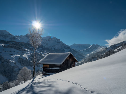 11.12.18 Endlich ist er da, der Powder und mit Carlo will ich ein paar Schwünge am Eggebergli in den Schnee zeichnen