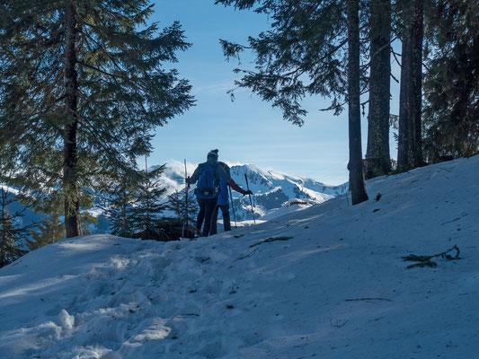Eines vorweg, auf  1400 Meter liegt genug Schnee für interessante Schneeschuhtouren. Am Jaunpass hat der Sturm vom vergangenen Sonntag seine Spuren im Schnee hinterlassen