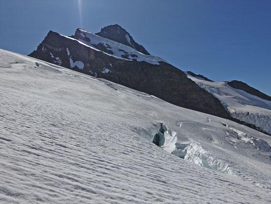 Heute war die halbe Hüttenbelegschaft unterwegs zum Finsteraarhorn. Wir passieren einige imposante Spalten im Abstieg und erfreuen uns an der geheimnisvollen Stille, welche nur vom Knirschen der Steigeisen und Knacken des Gletschers unterbrochen wird