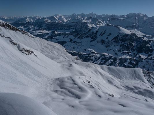 Blick in die Berner Alpen. Im Vordergrund das Elsighore, diese Wunschtour fällt mir zwei Tage darauf mit guten Freunden in den Schoss