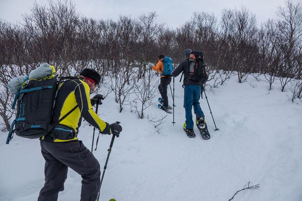 Unsere Schneeschuhläufer kommen einfacher durch das Gestrüpp als wir Skitourenfahrer,...