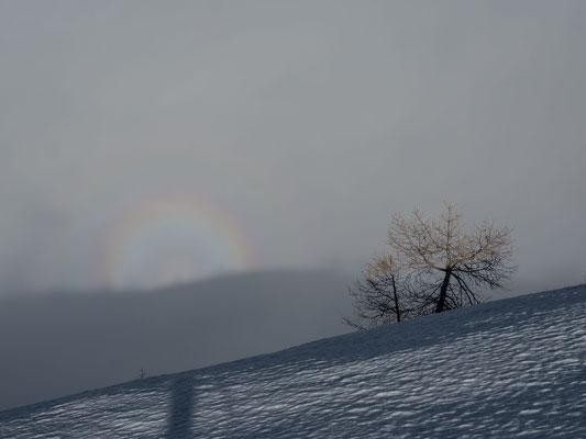 Zuerst muss ich mich Tags darauf im Nebel zurecht finden, bevor mein Schatten dieses Halo in die Nebelwand zaubert