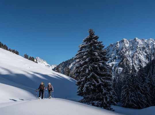 So stellen wir uns Schneeschuhträume vor. Powder, stahlblauer Himmel, mal eine Spur hier, und mal eine da...
