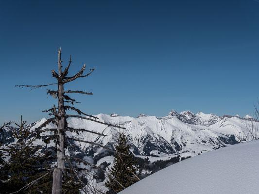 Doch zuerst ist der Brenlaires unser Ziel. Kurz unter dem höchsten Punkt erblicken wir die Gipfelkette um den Vanil Noir