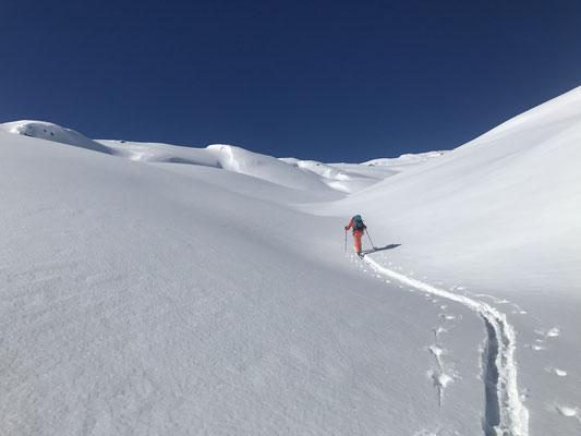Auch wenn mich Danielle mit der Spurarbeit unterstützt, muss ich doch am nächsten Morgen für eine Schneeschuhtour rechtzeitig in Andermatt eintreffen
