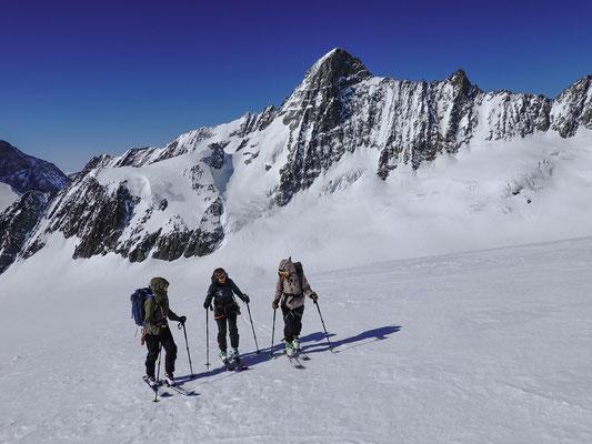 Immer wieder ein reizvolles Erlebnis, der Aufstieg zum Fieschergrat. Mächtig überragt das Gross Grünhorn unser holdes Trio
