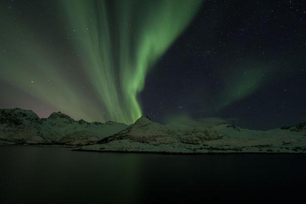 Unglaublich, wie intensiv die Nordlichter diesmal über den Nachthimmel wabern