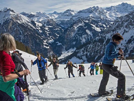 Aufstieg ab Ramslauenen zum Rüederigs, am Horizont die Berner Alpen vom Dreispitz bis zum Gspaltenhorn